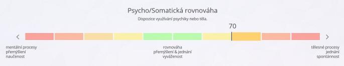 Obrázek: Ukázka psychosomatické rovnováhy