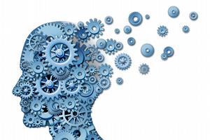 Neurologické aspekty učení a jak jich využít při budování L&D programu (2/2)