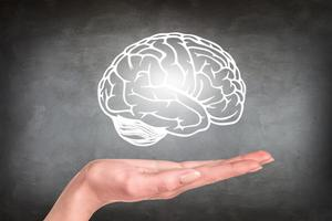 Neurologické aspekty učení a jak jich využít při budování L&D programu (1/2)