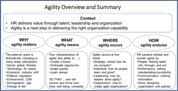 agility overview and summary