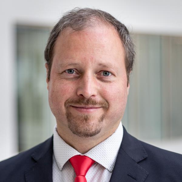 Petr Strnad, Deloitte